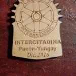 Intercitadina RC Pucon - Yungay
